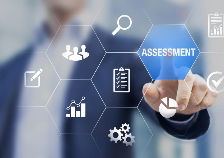 As a Public Accountant, you will be able to run personal assessments for your clients.