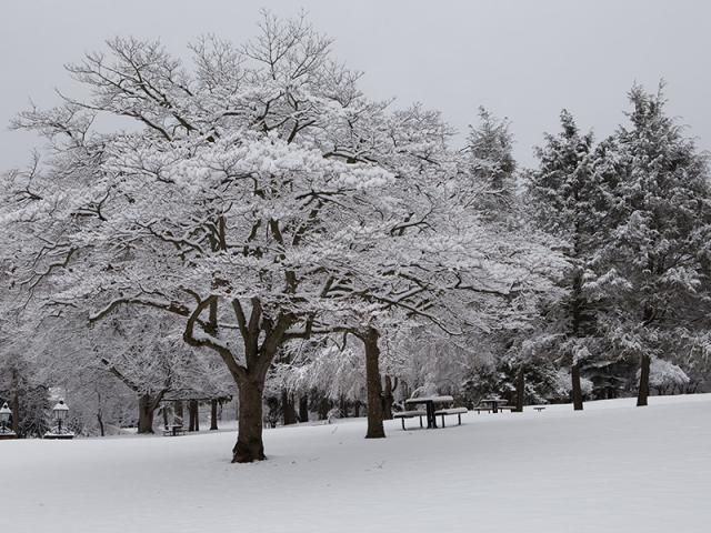Dobbs Ferry Campus in  Winter with  Snow